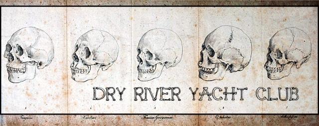 Skull Logo by Pop Narkotic